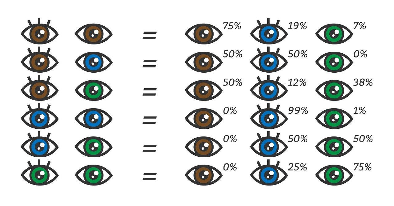 [Nuotrauka] Tikėtinos vaiko akių spalvos